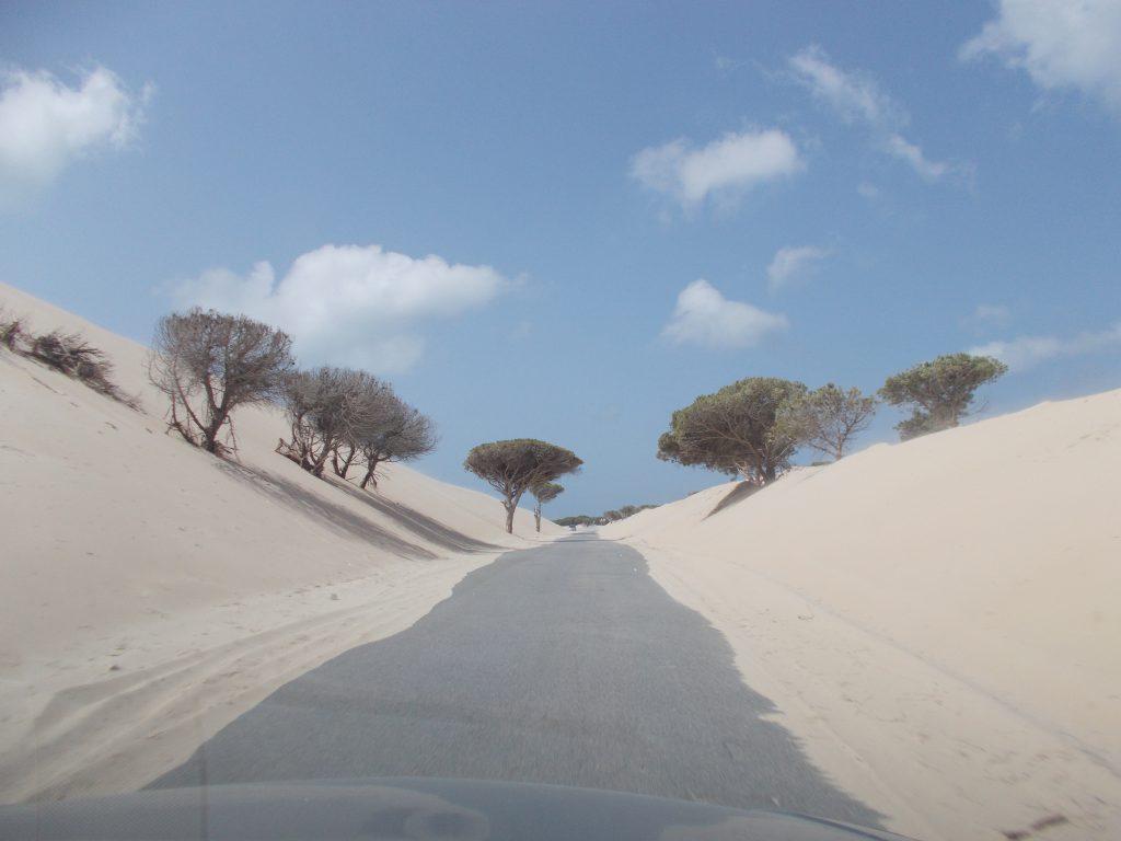 Punta Paloma Tarifa - Espanha